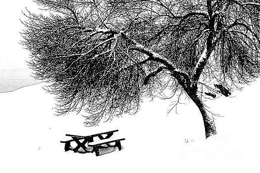 Roland Stanke - winters bench
