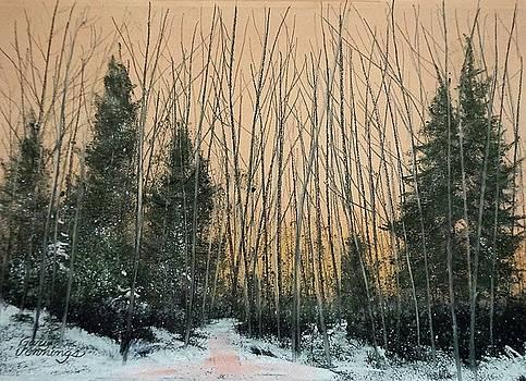Winters Cold Kiss by Gary Edward Jennings