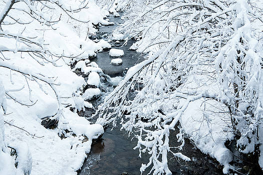 Winters creek- by JD Mims