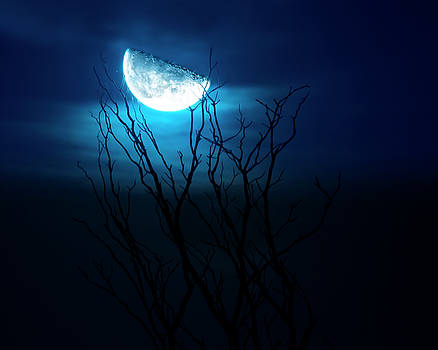 Winter's Eve Moon by Mark Andrew Thomas