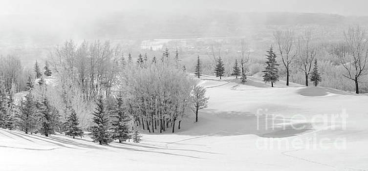 Winter's Gentle Kiss by Dee Cresswell