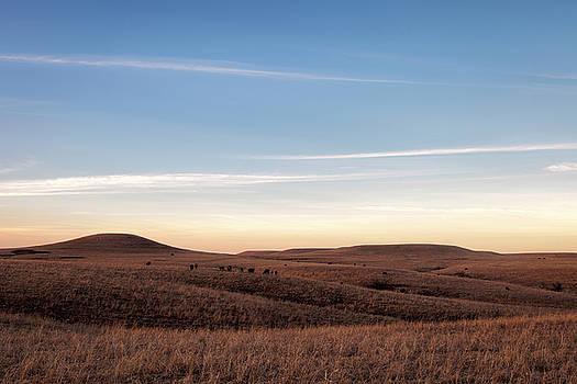 Winter's Prairie by Scott Bean