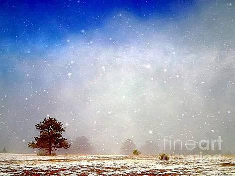 Winter's Silence by Dani Stites