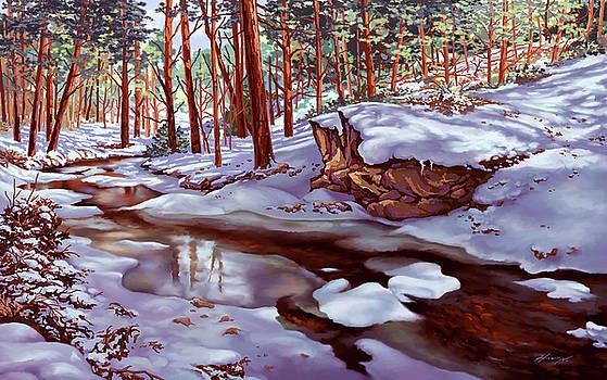Winter's Warmth by Hans Neuhart