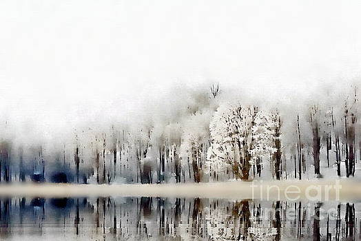 Winterscape  by Andrea Kollo