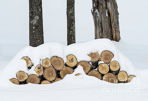 Wintertide... by Nina Stavlund