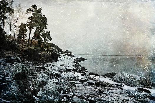 Wintertide by Randi Grace Nilsberg