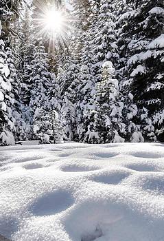 Wintertime at Castle Peak by Mark Chandler