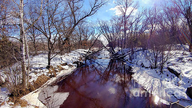 Wintertime in Necedah  by Ricky L Jones