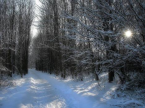 Winterways by Birgit Presser