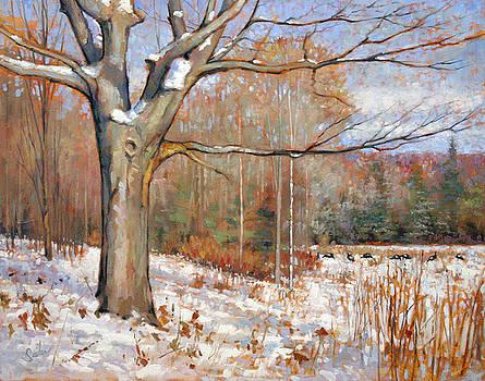 Wintry Argonne Tree by Larry Seiler