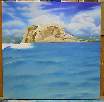 WIP- Creole Rock 01 by Cindy D Chinn