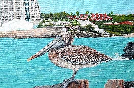 WIP-Pelican Closeup by Cindy D Chinn