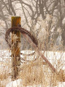 Wired in the Country by Lori Frisch