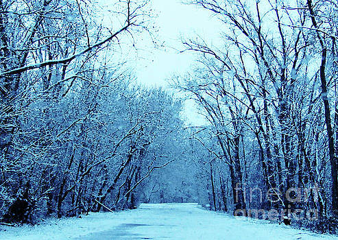 Wisconsin Frosty Road in Winter Ice by Ron Tackett
