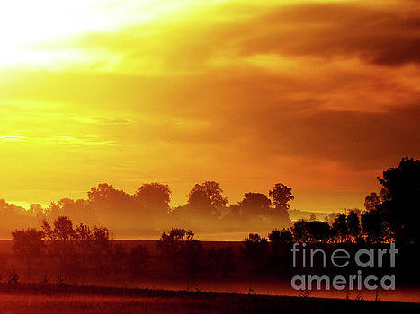 Wisconsin Misty Morning Farm Fields Sunrise by Ron Tackett