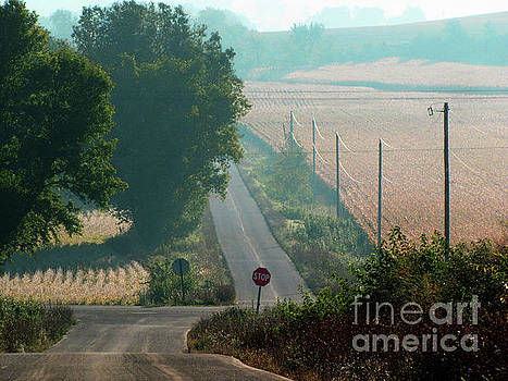 Wisconsin Rolling Hill farmland Stop Sign by Ron Tackett