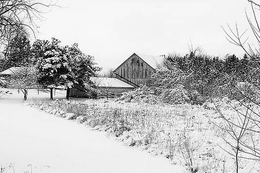 Wisconsin Winter by CJ Schmit