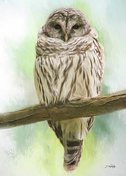 Wisdom Listens - Barred Owl Art by Jordan Blackstone