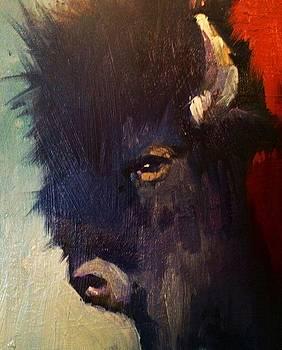 Wisdom of the Bison by Stephen Wysocki