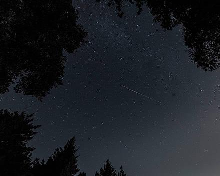 Alex Lapidus - Wish upon a Star