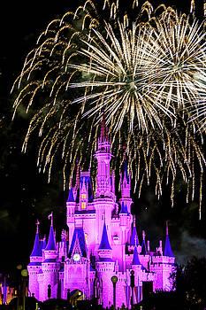 Wishes fireworks Disney world  by Andy Myatt