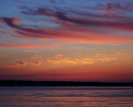Wispy Sunrise Pink and Purple by Vicki Jauron