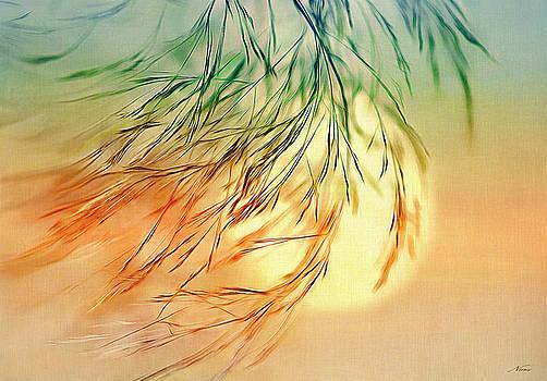 Wispy Sunset-0 by Nina Bradica