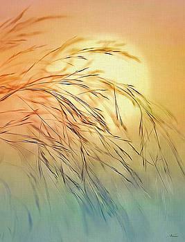 Wispy Sunset by Nina Bradica