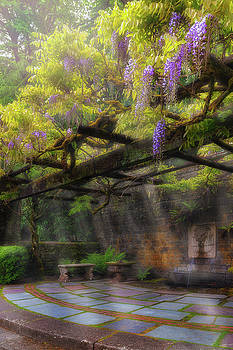 Wisteria Flowers Blooming on Trellis over Water Fountain by David Gn