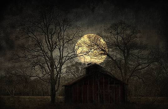 Witches Moon by Hazel Billingsley