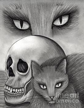 Witch's Cat Eyes by Carrie Hawks