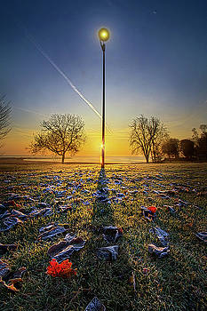 With A Little Help From My Friend by Phil Koch