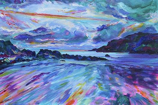 Porth Dafarch, Anglesey, Wales by Karin McCombe Jones
