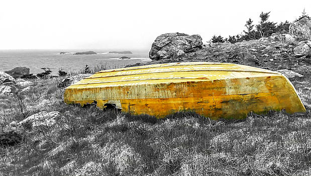 Withered Boat  by Ryan Tarrow