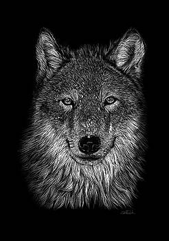 Wolf by Isabel salvador by Isabel Salvador