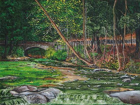 Wolf Creek Glen by Christopher Keeler Doolin