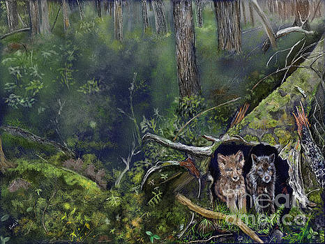 Wolf Cubs in a Hollow Tree by Barb Kirpluk
