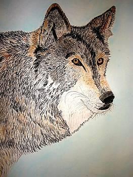 Wolf  by Debbie Braswell