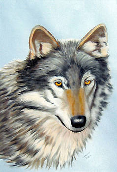 Wolf in Pastels by Lorraine Foster