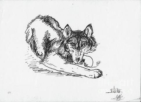 Wolf In by Peter Kulik