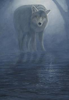 Wolf in the Mist by Lorraine Foster