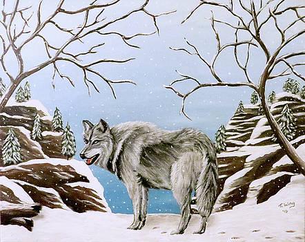 Wolf in Winter by Teresa Wing
