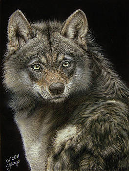 Wolf by Irina Miroshnikova
