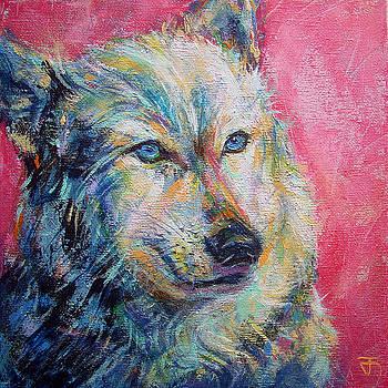 Wolf by Jack No War