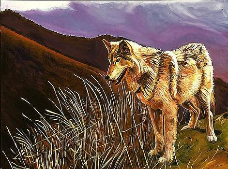 Wolf by Kathleen Heese