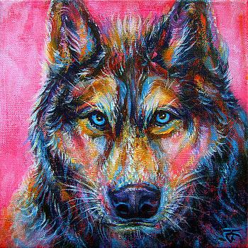 Wolf no.2 by Jack No War