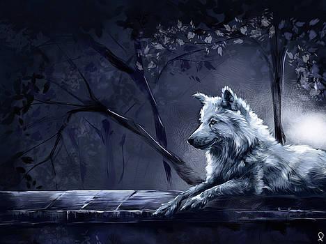 Wolf Study by Patricia C Bernhard