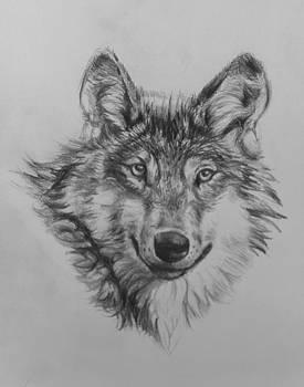 Wolf by William Hay