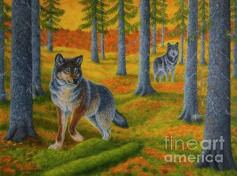 Wolf's forest by Veikko Suikkanen